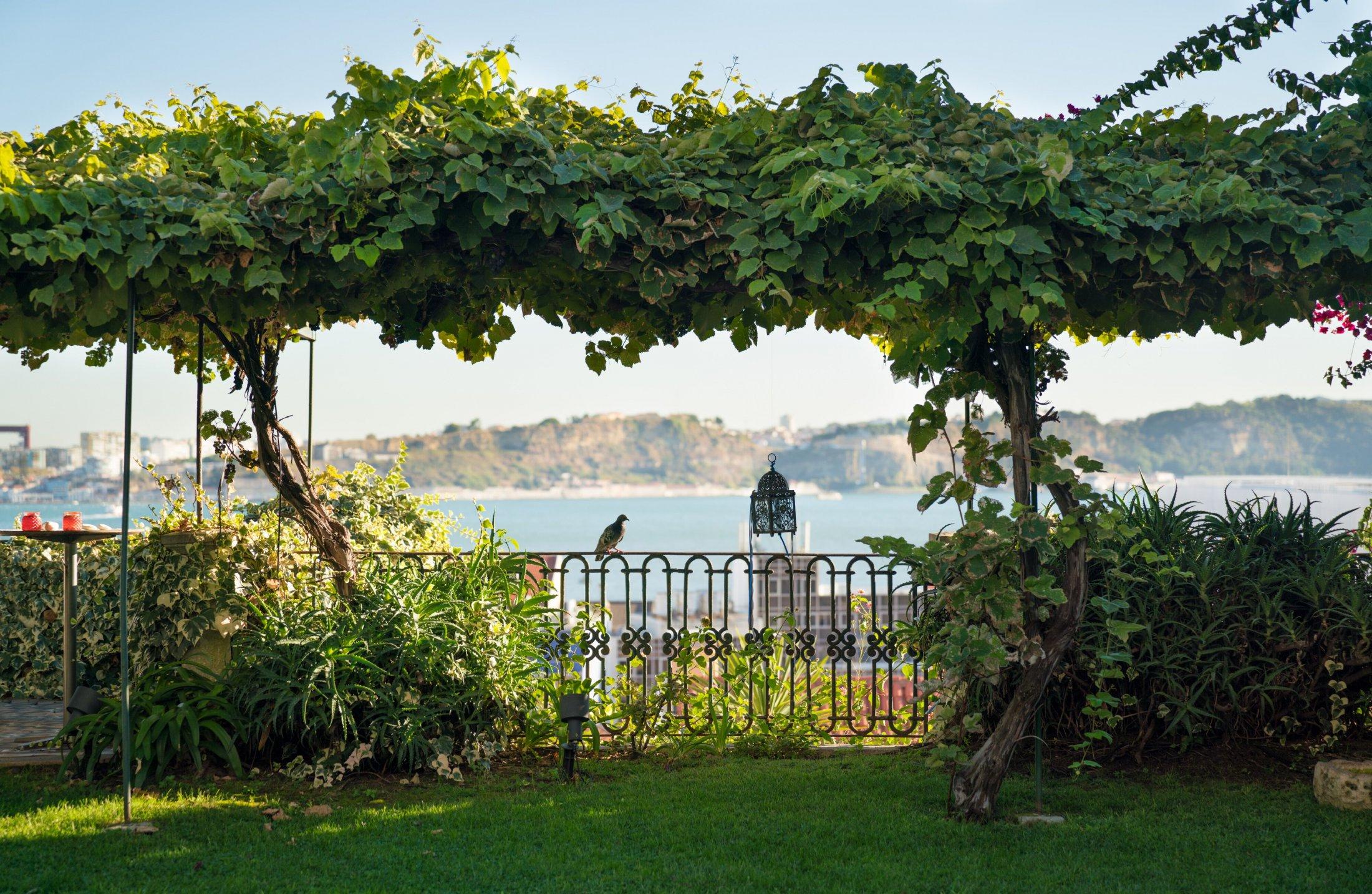 Este jardim privado no Adamastor é um dos que poderá visitar.