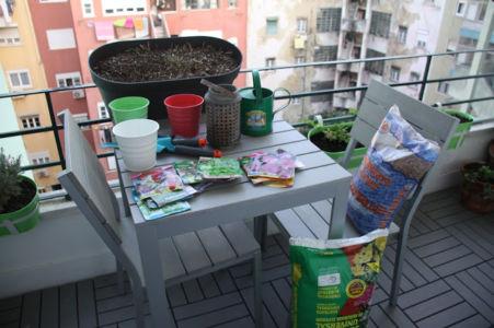 1. Reúna o material: vasos, sementes, leca, substrato, pulverizador com água e etiquetas.