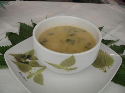 Sopa de urtiga