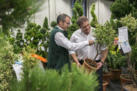 A spoga+gafa tem, todos os anos, exposições de plantas de toda a Europa. Na imagem: spoga+gafa 2016.
