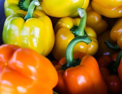 cultivar pimentos