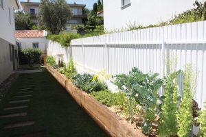 sua horta