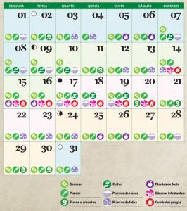 calendário lunar de janeiro