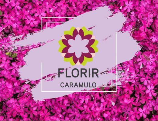 florir caramulo