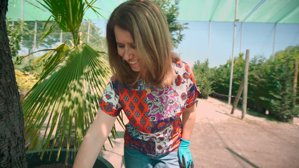Vídeo: Como Combater Formigas de Forma Biológica